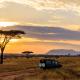 7 days best of kenya lodge safari