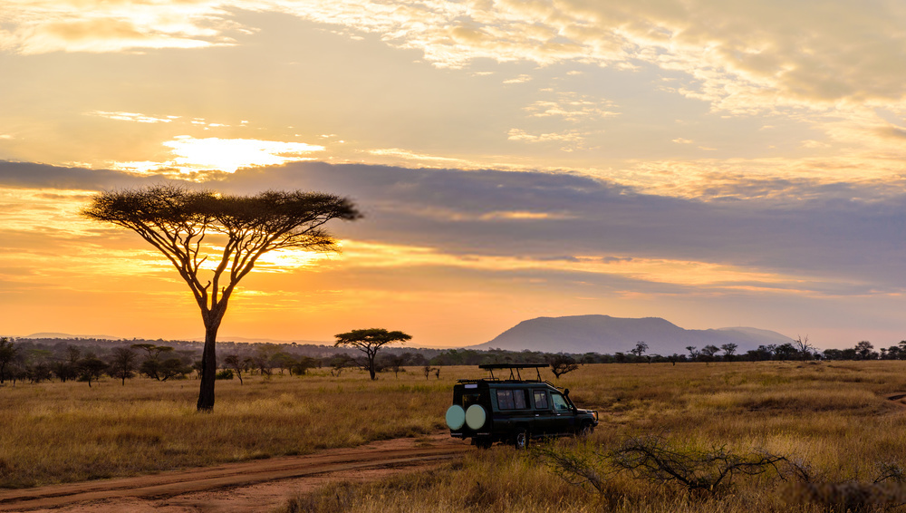 Day 5: Tsavo East – Mombasa/Nairobi